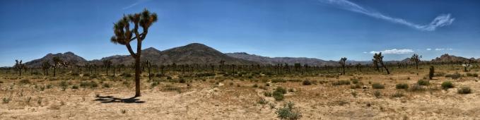 Panorama2 2